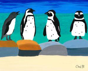 Boulders African Penguins